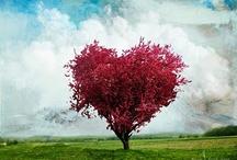hearts / by Erica Gwaltney