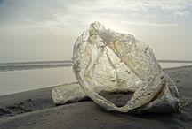 havfaldkunst  Fanø