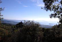 Week end in Umbria: IL TRASIMENO / Dallo splendido Lago Trasimeno, dove sono ambientati molti dei miei romanzi.