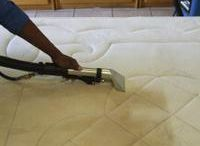 Cleaning Adelaide / We believe that a healthy Adelaide home starts with clean carpet and that's why we use the Hot Water Extraction method also known as Steam Cleaning to clean all our customer's carpets.To protect your investment and your health, carpets need to be professionally cleaned every 6 to 12 months.