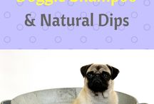 Dog Grooming / Learn how to groom a dog at home, using natural substances and products as much as possible.