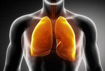 Jarabes pulmones