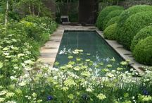Landscape / Gardens