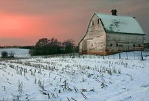 Barns / by Stacy Harrison-Butters
