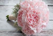 Kukat, kasvit ja piha