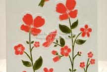 SU : Wildflower Meadow