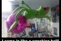 Kermit Kraze