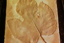 own / leaf fossil art work