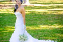 shp brides