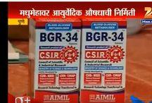 BGR-34, Ayurvedic Treatment for Type 2 Diabetes Mellitus