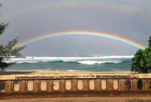 Hawaii / by Helen Surmont