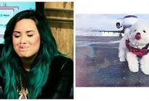 Demi Lovato ---> Our Inspiration❤