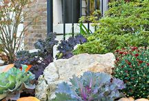 Fall Outdoor Landscape Decorating