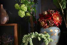 Flowers. / by Angela Crisostomo