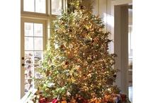 Christmas Trees / by RichmondMom