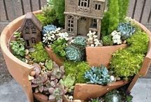 fairy gardens / by Dianne Freeman