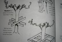 Tree house / Casuta in pom