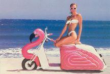 Flamingo Fever! / by Vicki Gordon