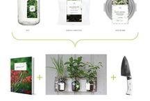 packaging_herb
