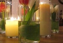 Party Ideas / by Gabrielle Guy-Haby