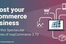eCommerce Development / ecommerce development platforms and services