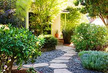 Lawn-free yard