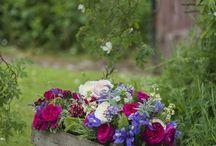 jardin et fleurs