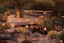 Outdoor decor+ gardening