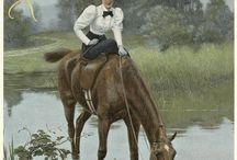 Konie,jeździectwo