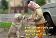 Dog Love Tales