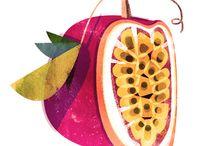 Illustrations // Food & Drink
