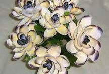 flores de caracoles