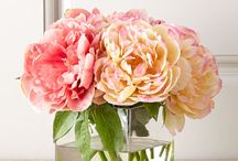 Peony Inspired / by Shoppable