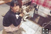 Mai Fukagawa PhotoBook