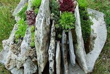 Live stone gardening