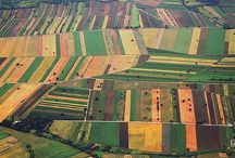 Tarım & Agricultural