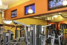 Fitness Center & Pool Construction / Titus Contracting has expertise in remodeling spaces for a fitness center or indoor pool.