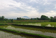 Places Around Bali.