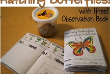 Butterfly Unit (MFW K) / Learning activities to use when doing the Butterfly unit in My Father's World Kindergarten (MFW K). Caterpillar and Butterfly snacks, crafts, activities, and ideas for kids