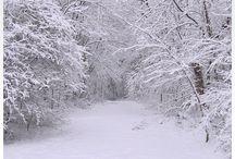 ( 25 )    ☆  雪景色  ☆