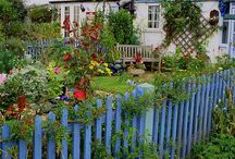 Beautiful Picket Fences / Looking for picket fences to try out a project or two.. Check out: http://www.facebook.com/ricketyswank