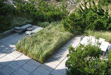 Residental garden