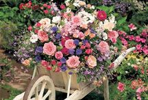 shabby vintage flowers