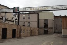 Macallan Whisky / Whisky Please sells the finest single malt whiskies online at very low prices.