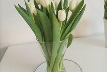Foto blommor