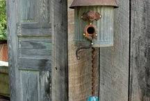 Neat Birdhouses / by Gail Rogers