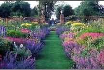 Bloemen tuinen / Alles voor in de tuin