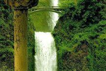 amazing ...wonders of nature