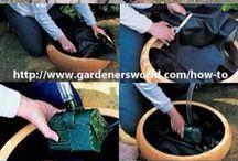 my garden!!!!