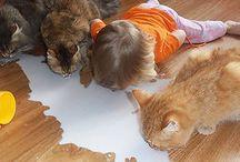 Kendini Evcil Hayvan olarak Düşünen Çocuklar